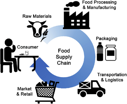 An image depicting the food supply chain from raw materials to the consumer